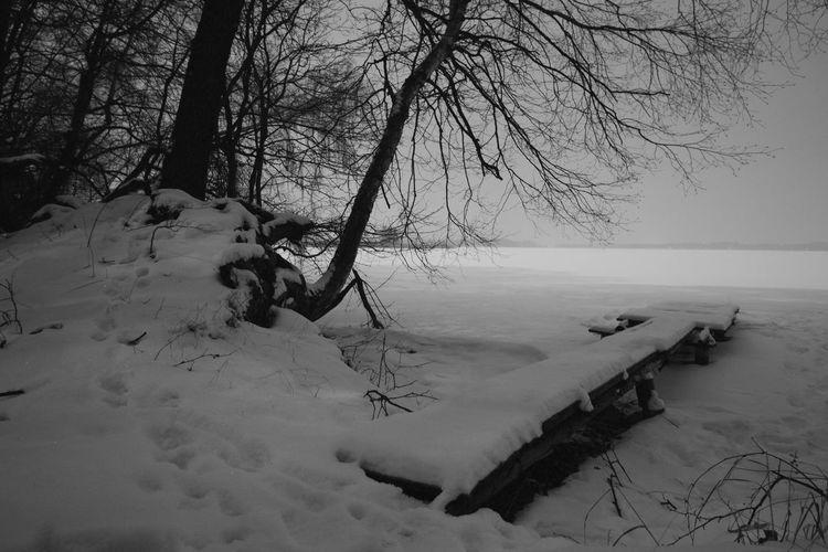 Frost Full Moon Lake Masuren Masuria Mazury Night Nightphotography Snow Winter