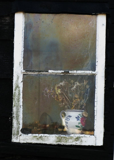 Decaying Window on the World Abandoned Bad Condition Brick Wall Closed Damaged Destruction Deterioration Dirty Door Indoors  No People Obsolete Old Wall Wall - Building Feature Weathered Window Window Window Pane Panes Of Glass Flowers Jug Decay Decaying Flaking Paint Reflection Dungeness Sash Black Hut Reflections Photography Photograph Colot Film Digital Image Colour Color Colours Mused Colors Documentary Reportage Taking Photos Shoot Shot Sho Wood Wood - Material Wooden