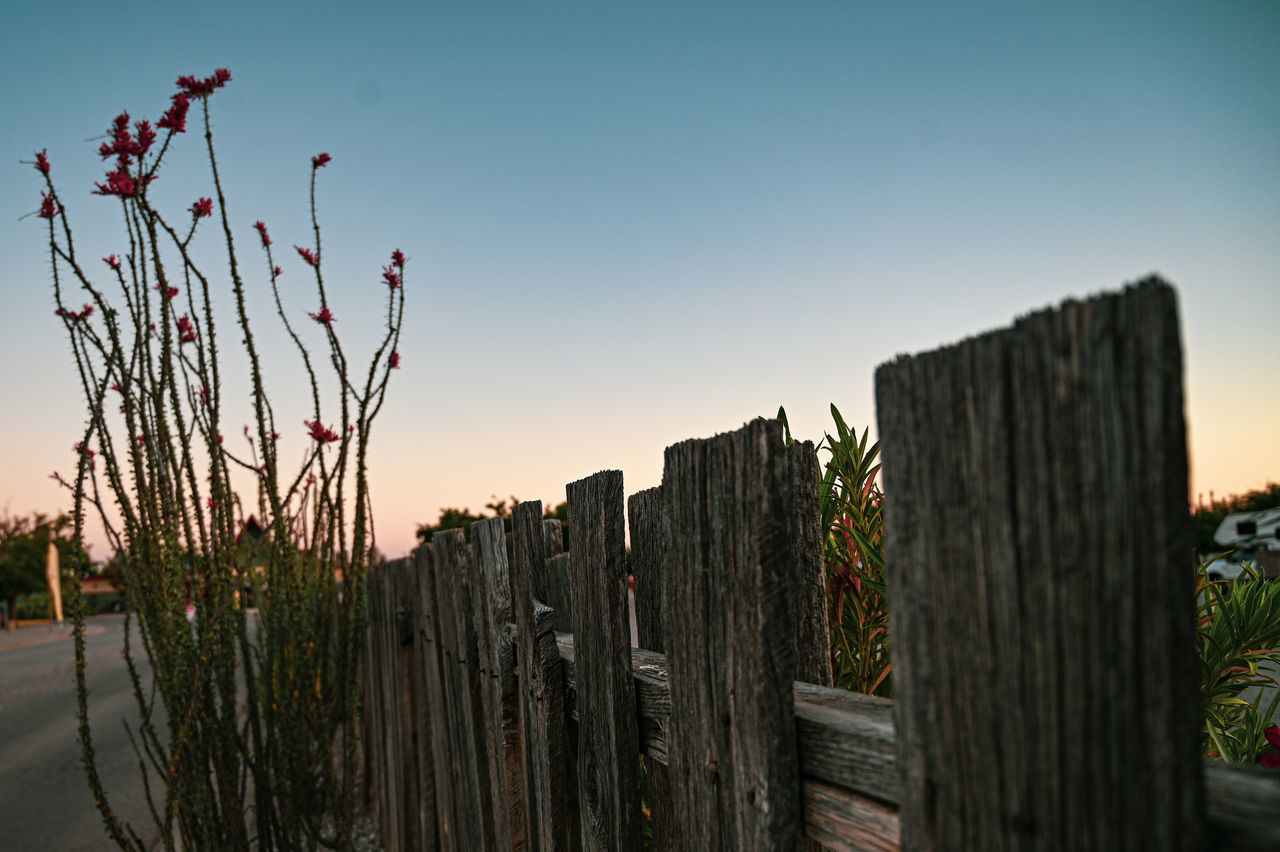 PANORAMIC VIEW OF WOODEN POST AGAINST CLEAR SKY