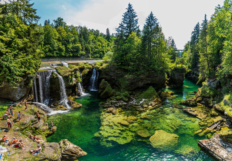 Traunfall Beauty In Nature Flowing Flowing Water Forest Green Color Growth Nature No People Non-urban Scene Oberösterreich Outdoors Plant River Rock Rock - Object Scenics - Nature Solid Stream - Flowing Water Tranquil Scene Tranquility Tree Upperaustria Water Waterfall