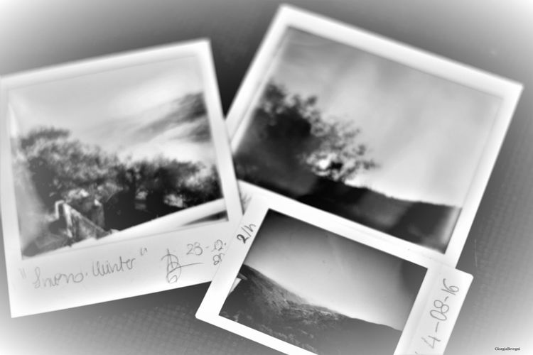 4 Seasons Black & White Black And White Black And White Photography Blackandwhite Blackandwhite Photography Blackandwhitephotography Day EyeEm Gallery EyeEm Nature Lover Impossible Impossible Project Impossibleproject Instant Photography Instantanea Instantphoto Landscape Landscape_Collection Lomo'instant Polaroid Polaroid 600 Polaroid Art Polaroid Camera Polaroid Spectra Sesons