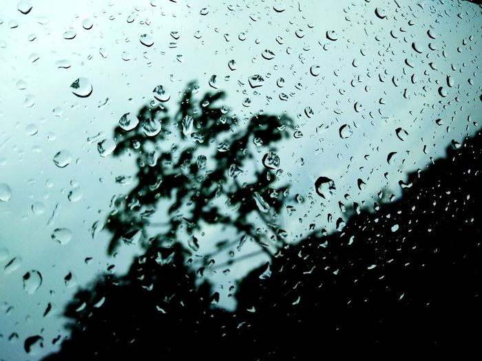 Drop Full Frame Window Backgrounds Water Wet Indoors  No People Close-up Day RainDrop Nature Sky Nature Frosted Glass In A Car Window Car Land Vehicle Tree Vehicle Mirror Windshield Transportation Rainy Days☔ Freshness Connected By Travel