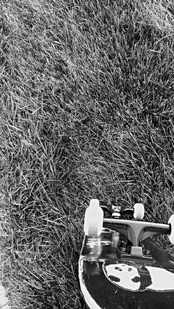 Skateboarding Skate Skateboard Skatelife Skating Skater Skate Life ENJOI Deck Skate Deck Sticker Blackandwhite Black And White Black & White
