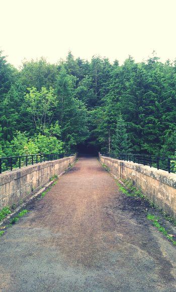 Dukes Bridge, Chatelherault Country Park, Hamilton. Crossing over to the rain of Cadzow Castle. Chatelherault Country Park Escaping