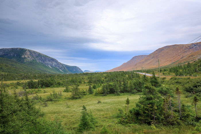 Tablelands in Gros Morne National Park. Newfoundland, Canada Landscape Mountain Scenics Nature Cloud - Sky Beauty In Nature Mountain Range Travel Destinations Tree Newfoundland GrosMorneNationalPark Outdoors First Eyeem Photo