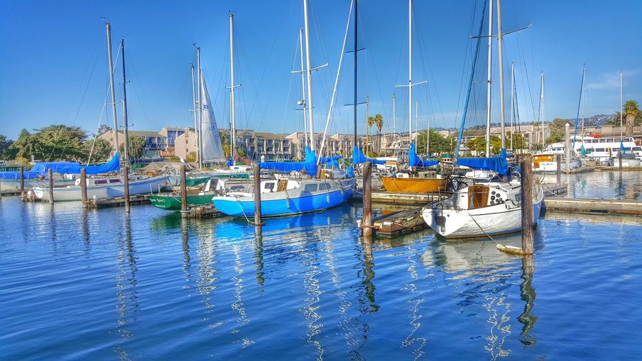 Marina Water