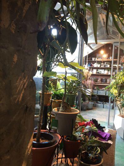#お洒落#堀江#ファッション#coffee#コーヒー#カフェ#cafe