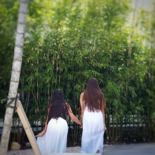 Two People Rear View Girls Togetherness Outdoors Nature Day Bamboo Grove Miami Travel Facelesscandid Streetphotography Candid Candidshot Green Whitedress