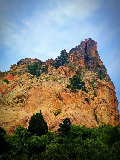 Outdoors No People Nature Day Sky Beauty In Nature EyeEm Nature Lover Google Pixel XL Colorado Beauty Around Me Rock Formation Garden Of The Gods Trees And Nature Tree On The Rock