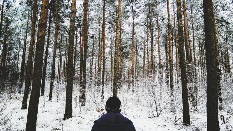 Stanting in the winter forest Deepfreeze IPSWinter