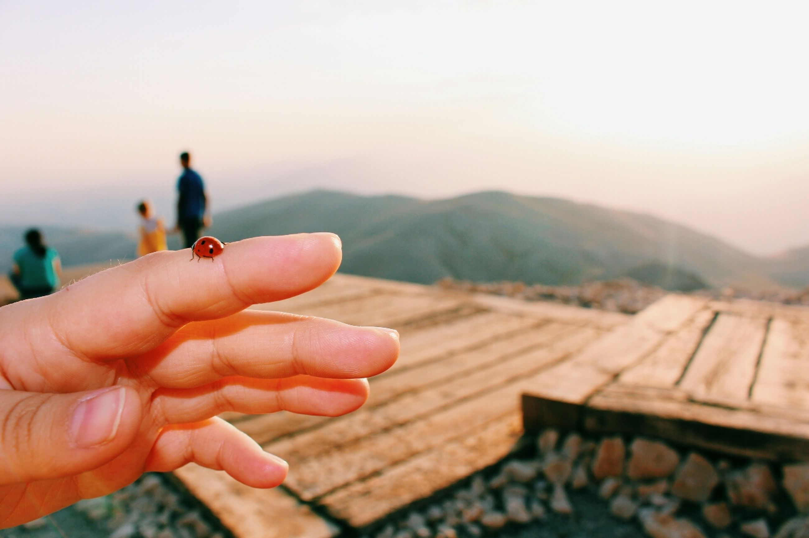 person, part of, cropped, holding, human finger, focus on foreground, mountain, unrecognizable person, personal perspective, lifestyles, men, leisure activity, clear sky, sky, close-up, landscape, nature