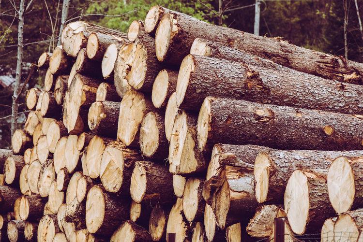 trunks stack-