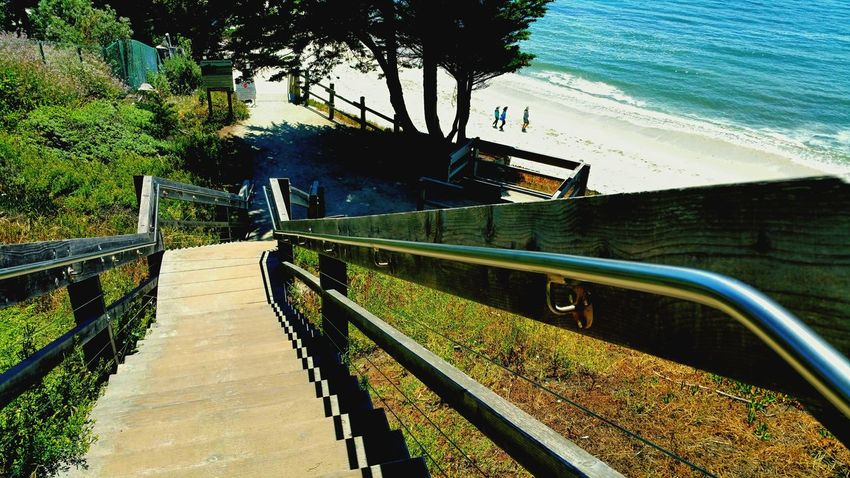 Stairs Stairs To Beach A Long Climb Worth The Climb Check This Out Tree_collection  People On Beach Depth Of Field Distance View From Above Enjoying Life Simple Beauty Nature_perfection Nature_collection Outdoor Photography Pattern, Texture, Shape And Form Meditation Simplicity Ocean, Waves, Nature Enjoying Natural Beauty Friends Walking The Beach Enjoying Friendship Flying High