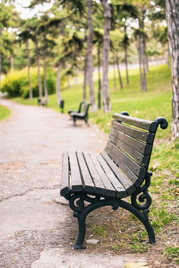 An empty bench. Absence Acclivity Bench Bench In Nature Climb Empty Empty Bench Empty Benches Park - Man Made Space Park Path Pathway Pathway In The Park Promenade Relaxation Rise Wooden Bench Wooden Benches Wrought Iron Bench Benches