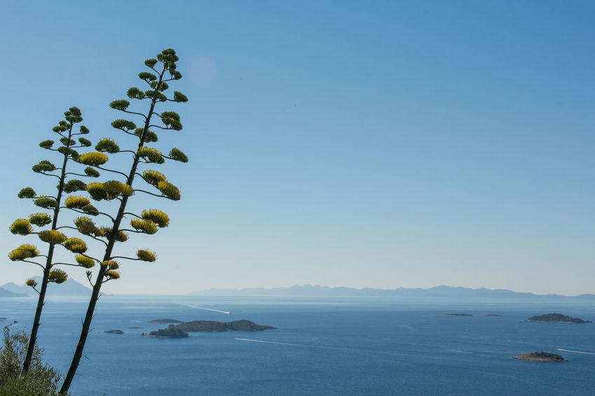 Croatia Island View  Islands Adriatic Sea Croatia ♡ Croatia_photography Island Landscape Orebic Sea Sea And Sky See Sea