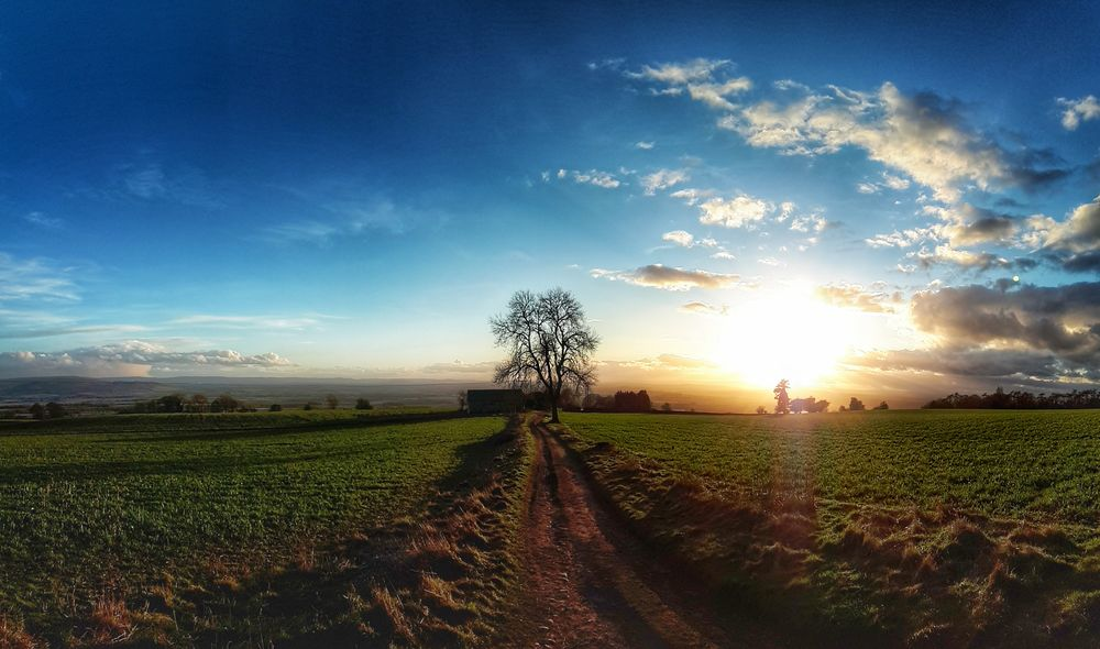 """On A Clear Day You Can See Forever!"" Cloudscape Rural Scene Pathway Sun Goes Down Cloud_collection  Exceptional Photographs England🇬🇧 Farm Life Farm Agriculture Field Sunset Cloud - Sky Rural Scene Sky Nature Beauty In Nature"
