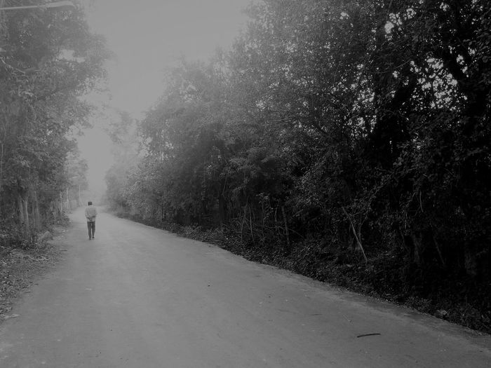 Weather Rain Fog Snow Tree Winter Snowing Child Nature Wet Cold Temperature One Person Beauty In Nature Outdoors Rainy Season People Real People Day Extreme Weather Adult Walking Nature Adapted To The City The City Light The Street Photographer - 2017 EyeEm Awards
