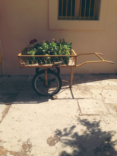 Flower pots in cart by exterior of building