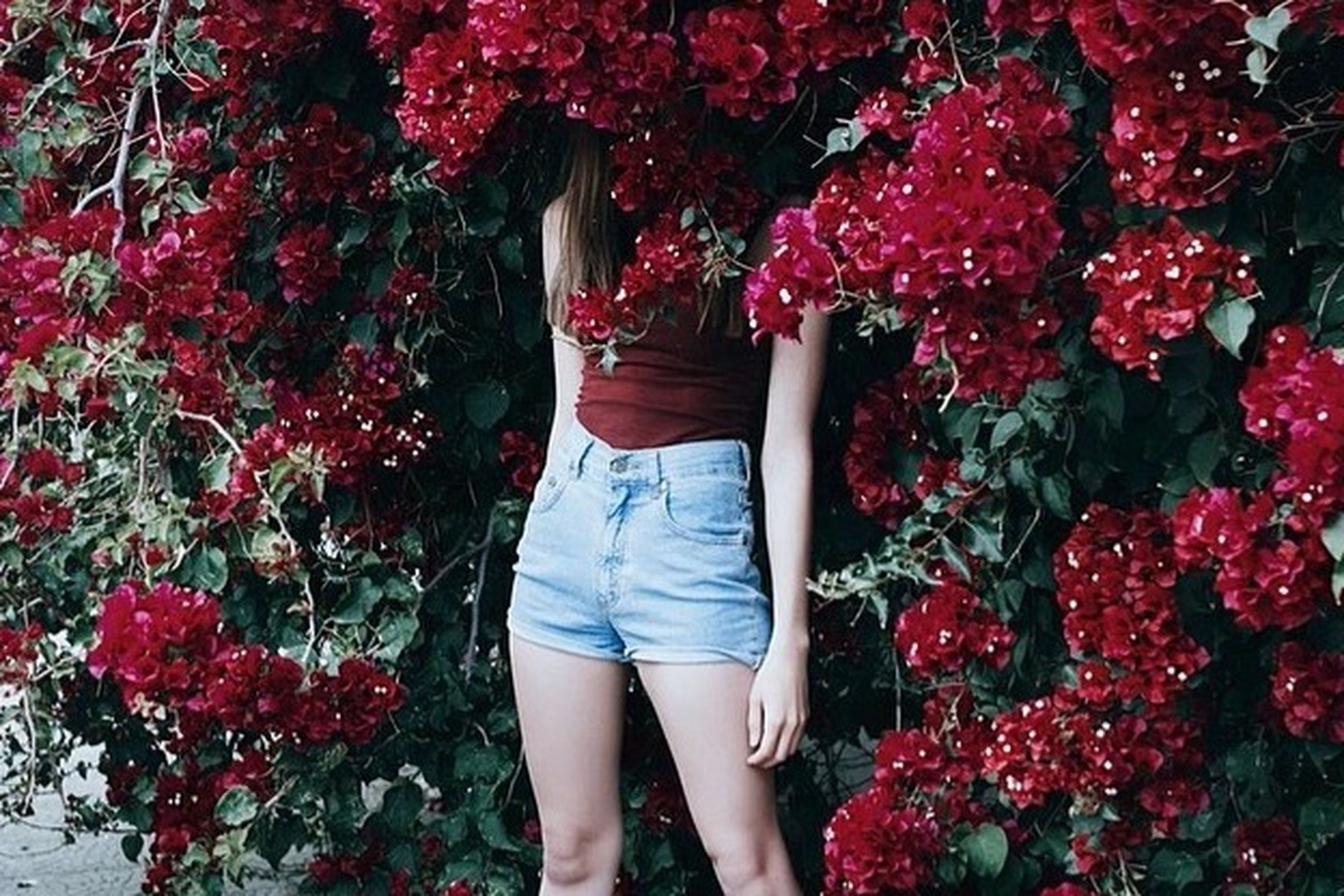 flower, lifestyles, person, standing, red, leisure activity, casual clothing, tree, young women, rear view, freshness, dress, growth, young adult, pink color, plant, outdoors, nature