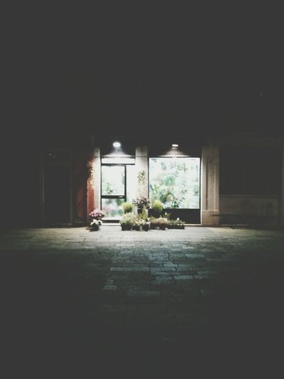 The Florist. · Venice Flowers Plants Store Night Lights Night Photography City Lights Urban Landscape Photo Effects Just Playing Around My Best Photo 2015