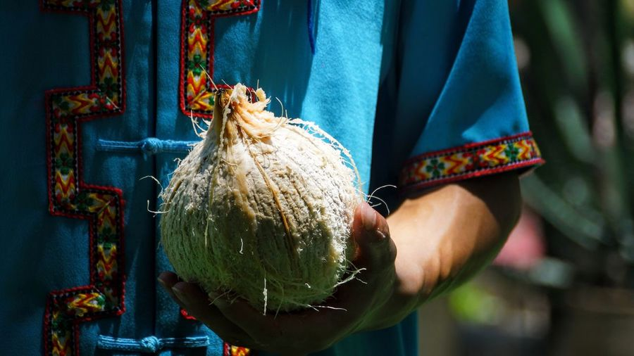 Close-up of hand holding coconut