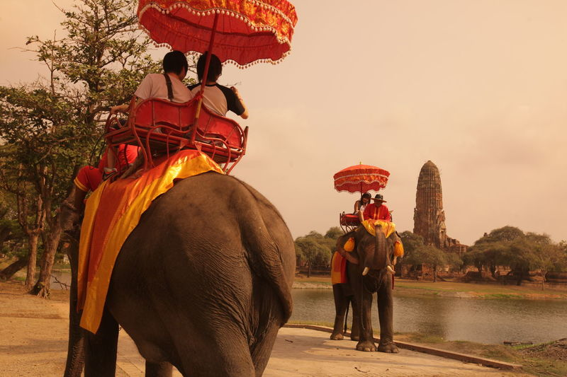 ASIA Ayuthaya Ayutthaya Landmark Landmarks Southeastasia Temple Thailand Travel Walking Around Water