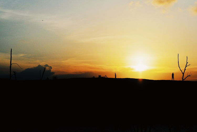 Sunset Silhouette Sun Orange Color Sky Landscape Romantic Sky Dramatic Sky Atmospheric Mood Atmosphere Idyllic Atmospheric Moody Sky
