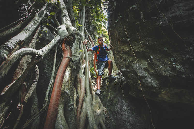 Man standing on rock in forest