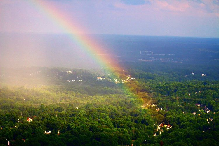 Aerial rainbow Rainbow Beauty In Nature Nature Multi Colored Rural Scene Scenics Outdoors Tranquility No People Landscape Spectrum Sky Day Majestic Aerial View Beauty In Nature Aerialview Aviationphotography Aviation Photography Dramatic Sky Backgrounds Illuminated Nature