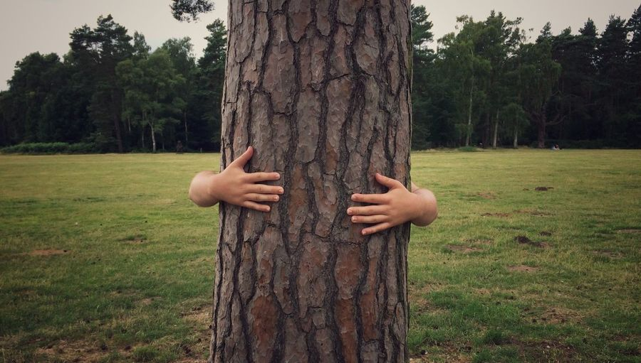 Man hugging tree trunk on field