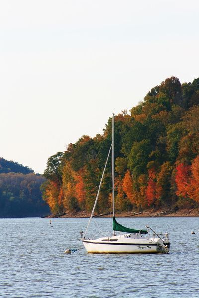 Autumn Beauty In Nature Clear Sky Day Fall Lake Mode Of Transport Nature Nautical Vessel No People Outdoors Sailboat Scenics Sky Transportation Tree Water Waterfront
