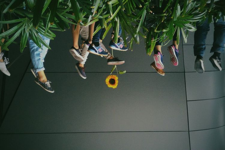 Upside down image of people with feet up in grass against wall