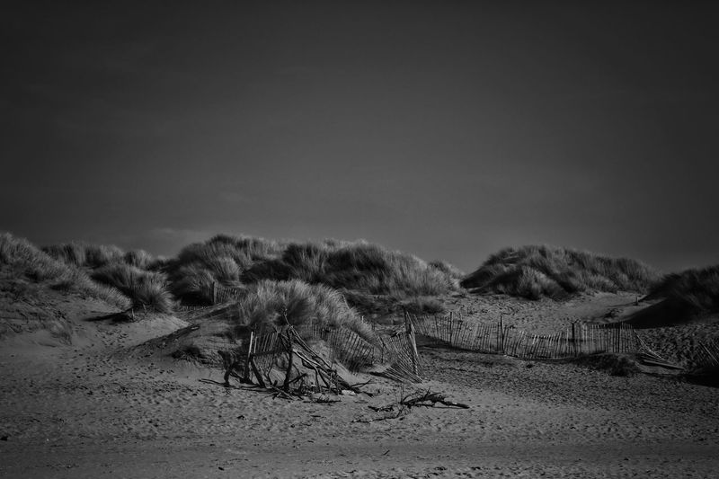 Formsby Beach Formsby Beach Liverpool Sky Land No People Environment Tranquility Nature Tranquil Scene Scenics - Nature Landscape Day Sand Field Non-urban Scene Desert Outdoors Beauty In Nature Arid Climate Cloud - Sky Copy Space Remote Climate Pollution