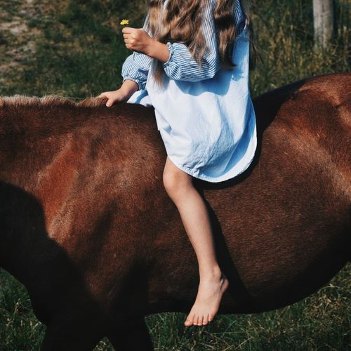 Low section of woman sitting on horse at field