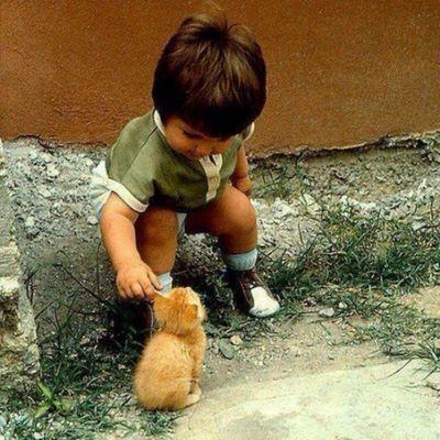 Cuteness Overload.... ^_^ * Dan tahukah kamu setiap binatang serta tumbuhan di muka bumi ini juga berzikir kepada Allah Yang Satu, maka berbuat baiklah terhadap setiap makhlukNya... Walau kamu tak suka... Janganlah kamu menjadi tangan-tangan yang merosakan dan membinasakan.... Islam Addin Love Almightybless