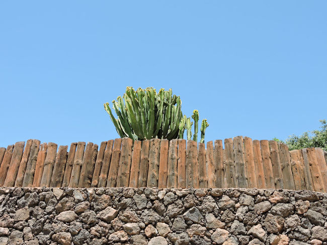 Blue Brick Wall Cactus Canary Islands Clear Sky Day Fence Lanzarote Outdoors SPAIN Wooden Fence
