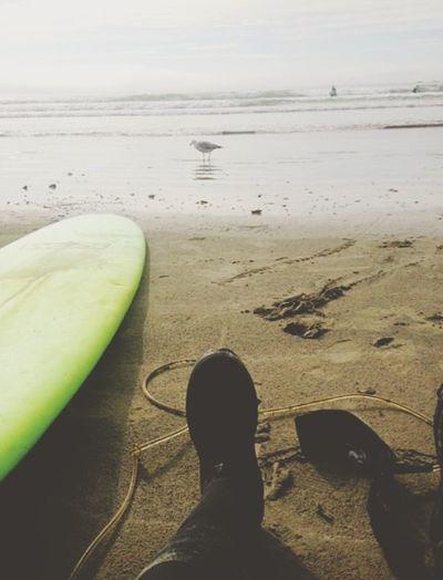 Holiday POV Tofino Surfing Surfboard