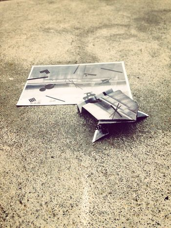Frog Paper