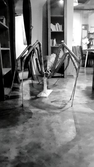 I'm coming to get you!! Art Art Piece Modern Art Spider Wire Big Spider Art Gallery Jakarta Creepy Crawlers Decoration Showcase March Hidden Gems  Koi Cafe Kemang Fine Art Fine Art Photography