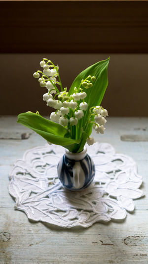 Lily Of The Valley Flowers In Vase On Table