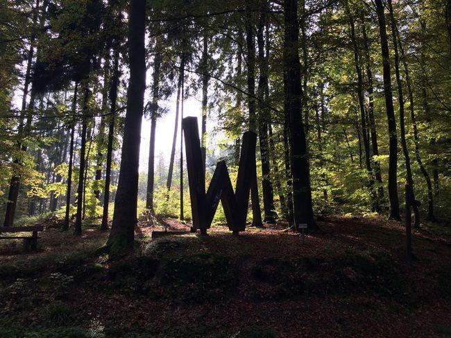 Deutschland. Dein Tag n Tag Nature Relaxing Walking Around