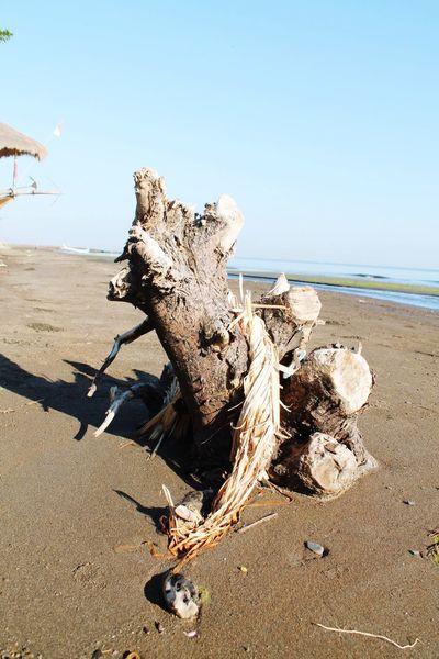 EyeEm Selects Water Sea Beach Sand Sky Horizon Over Water