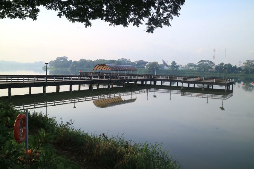 Lower Seletar Reservoir Nature Nparks Nparksbuzz Reflection Tranquil Scene Tranquility Water