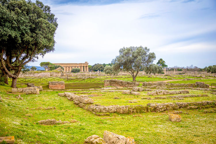 Italy Paestum Plant Tree Sky History Nature Landscape Architecture Grass Ancient The Past Cloud - Sky Green Color Environment Day Old Ruin No People Land Tranquility Built Structure Travel Destinations Ancient Civilization Archaeology Outdoors Ruined