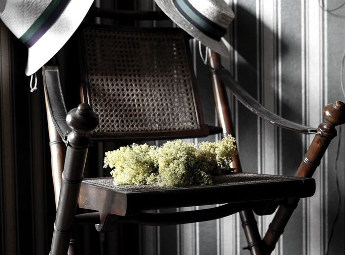 Close-up of flowers on chair