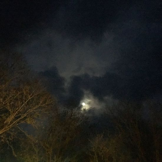 Rural Roads sweet moonlight Night Low Angle View Sky Nature No People Beauty In Nature Scenics Astronomy Cloud - Sky Tranquility Illuminated Tranquil Scene Storm Cloud Moon Tree Outdoors