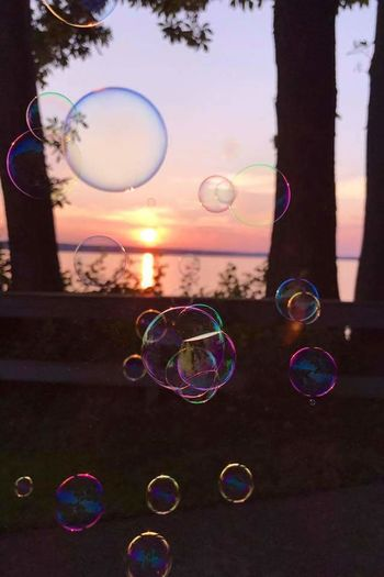 Bubbles and Sunset Soap Sud Bubble Wand Bubble Rainbow Blowing Fragility Mid-air Spectrum Refraction Fun No People Lightweight Double Rainbow Multi Colored Day Summer Outdoors Tree Nature Close-up Sunset Sunset_collection Sunset Silhouettes sunset #sun #clouds #skylovers #sky #nature #beautifulinnature #naturalbeauty photography landscape sunset #sun #clouds #skylovers #sky #nature #beautifulinnature #naturalbeauty photography landscape Sunlight