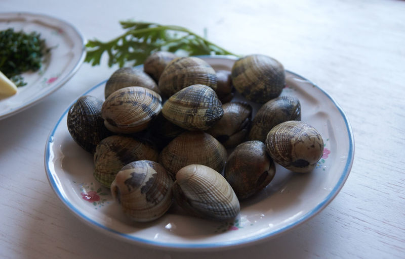 High angle view of shells in plate on table