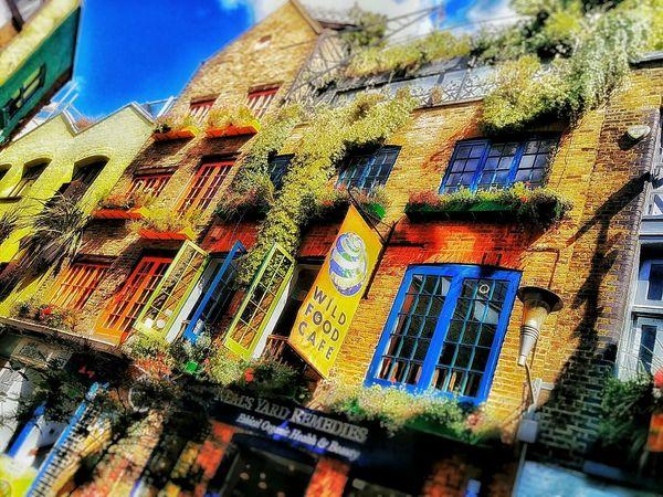 Amazing Architecture EyeEm London London Neal's Yard Urban Architecture Building Colors Summer Flowers Sun EyeEm LOST IN London