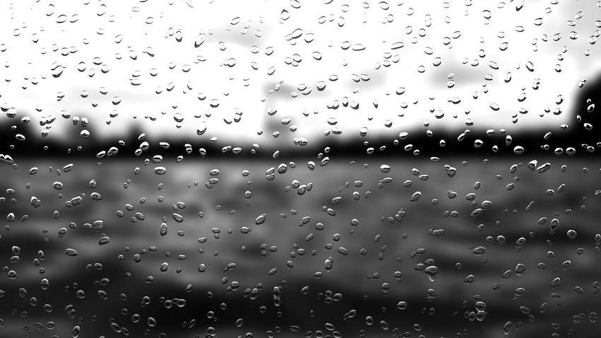 EyeEm Man Black And White Blackandwhite Photography Beach Water Bird Backgrounds Flying RainDrop Drop Wet Full Frame Sky Close-up Rainy Season Torrential Rain Rain Water Drop Migrating Shore My Best Travel Photo